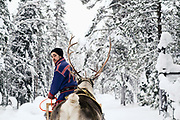 A Sami reindeer herder guiding a wooden sledge in the snowy Winter landscape at Lapinkyla village in Finnish Lapland on 13th Feb 2018