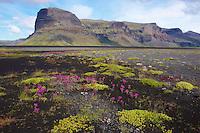 Islande, Mont Raudabergsheidi // Iceland, Mont Raudabergsheidi