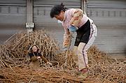 Women working at metal recycling steel in Dazu County, Chongqing, China