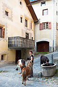 Ponies drink from water trough in Engadine Valley village of Ardez, Switzerland