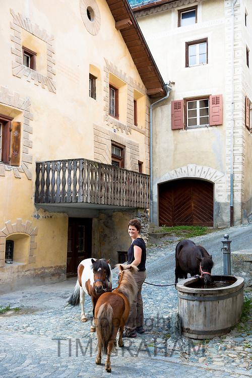 Ponies drink from water trough in Engadine Valley village of Ardez, Switzerland