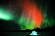 Alaska. Petersville. The Alaska Range. Winter camping near Mosquito Lake with Aurora Borealis (northern lights) overhead.