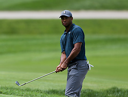 August 9, 2018 - St. Louis, Missouri, United States - Tiger Woods chips on to the green during the first round of the 100th PGA Championship at Bellerive Country Club. (Credit Image: © Debby Wong via ZUMA Wire)