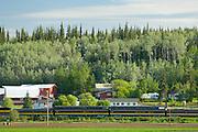 Railroad trip in Fairbanks, Alaska.