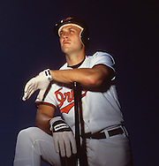 SARASOTA, FL - UNDATED: MLB Hall of Fame infielder Cal Ripken Jr. of the Baltimore Orioles poses for a portrait during spring training.  (Photo by Ron Vesely)
