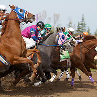 Quarter Horse Racing - Fort Erie