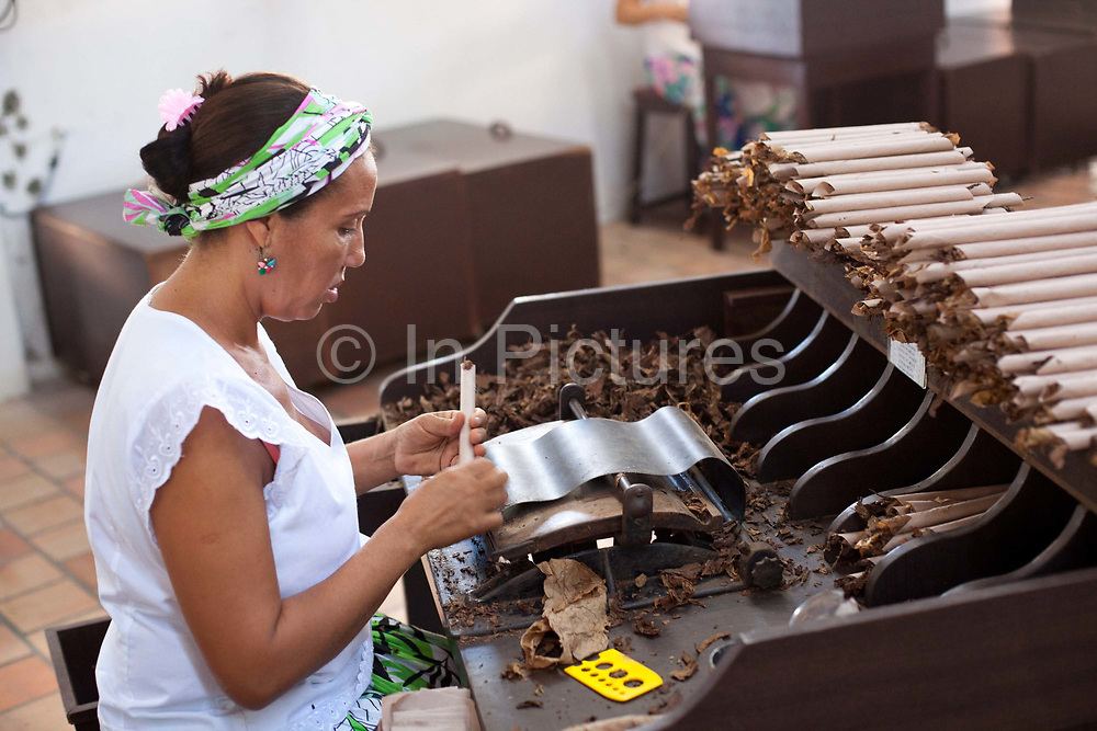 Brazilian Bahian women making cigars in a small factory from fresh tobacco, in the small city town of Cahoeira in Bahia, Brazil, which is know for it's quality tobacco.