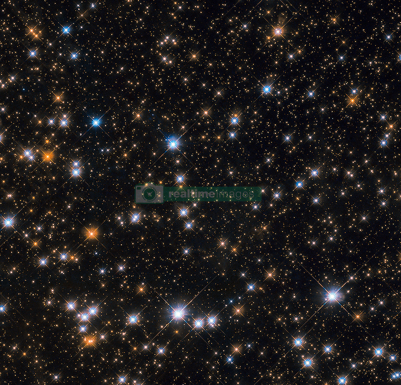 """This star-studded image shows us a portion of Messier 11, an open star cluster in the southern constellation of Scutum (The Shield). Messier 11 is also known as the Wild Duck Cluster, as its brightest stars form a """"V"""" shape that somewhat resembles a flock of ducks in flight. Messier 11 is one of the richest and most compact open clusters currently known. By investigating the brightest, hottest main sequence stars in the cluster astronomers estimate that it formed roughly 220 million years ago. Open clusters tend to contain fewer and younger stars than their more compact globular cousins, and Messier 11 is no exception: at its centre lie many blue stars, the hottest and youngest of the cluster's few thousand stellar residents. The lifespans of open clusters are also relatively short compared to those of globular ones; stars in open clusters are spread further apart and are thus not as strongly bound to each other by gravity, causing them to be more easily and quickly drawn away by stronger gravitational forces. As a result Messier 11 is likely to disperse in a few million years as its members are ejected one by one, pulled away by other celestial objects in the vicinity."""