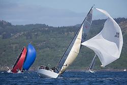 Clyde Cruising Club's Scottish Series 2019<br /> 24th-27th May, Tarbert, Loch Fyne, Scotland<br /> <br /> Day  1 - SWE18325, Wild Haggis, Ewan and Jackie Mackay, Loch Lomond SC, Farr 30<br /> <br /> Credit: Marc Turner / CCC
