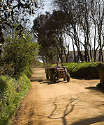 Man driving tractor along road, Island of Sark, Channel Islands, Great Britain