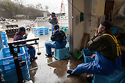 Fishermen take a break while they process seaweed.