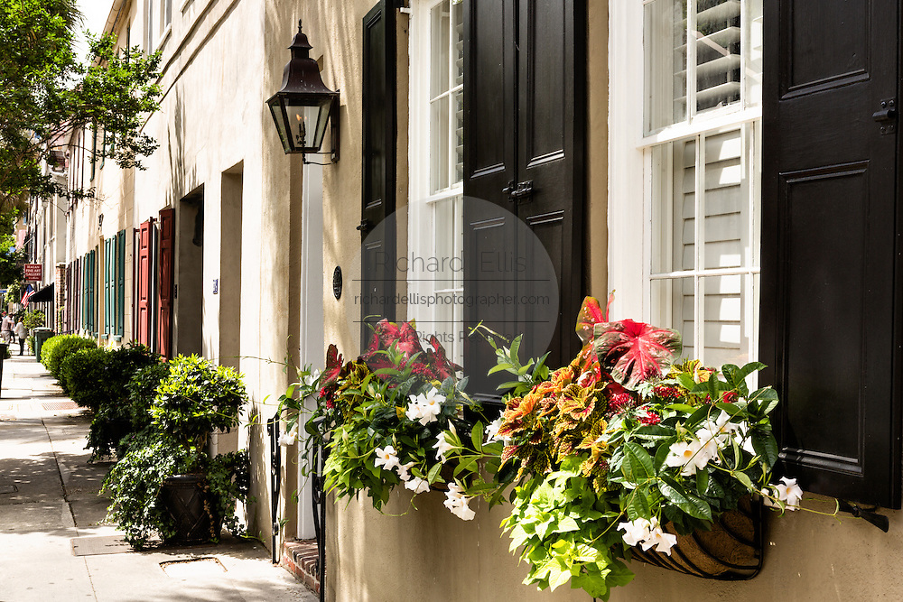Flowers blooming in window boxes with traditional shutters along State Street in historic Charleston, SC.
