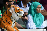 Cricket - 2019 ICC Cricket World Cup - Group Stage: Pakistan vs. Bangladesh<br /> <br /> Pakistan fans next to Bangladesh toy tiger in the crowd <br /> at Lord's<br /> <br />  colorsport/winston bynorth