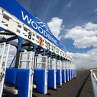 Thoroughbred Racing 2011 - Woodbine