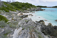Nonsuch Island, Bermuda - the centre of the Bermuda Pertrel breeding programme