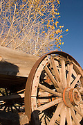 Vertical of wooden wagon wheel in autumn<br />