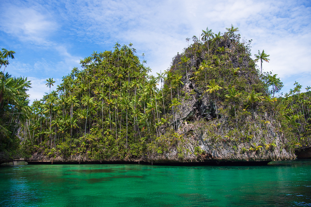 Karst landscapes in Triton Bay, Raja Ampat, Western Papua, from the book PAPUA - AMONG BIRDS OF PARADISE AND MANTA RAYS