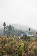 Smoke from the roofs of mountain huts, Tomba Region, Mount Hagen, Western Highlands Province, Papua New Guinea