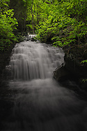 Found within the New River Gorge, a small cascade conceals the larger falls of Craigs Branch as if lying in wait to be discovered.
