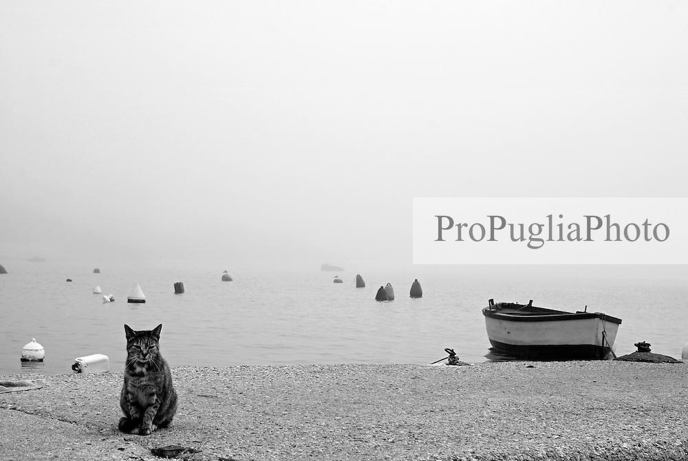 Brindisi, Villaggio Pescatori. Nebbia al porto in una mattina di novembre.