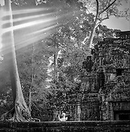 Light rays mystically stream through trees over Ta Prohm temple as a tourist videos, <br /> Angkor, Siem Reap, Cambodia, 2005, Southeast Asia
