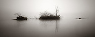 Three tiny islands floating in some thick fog in the early morning light. This is the Po river near to Carignano in Piedmont, Italy. Stitch of six vertical frames.