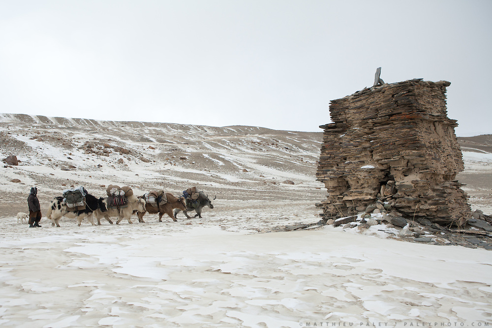 """A yak caravan passes a place named """"Caravan Balat"""" - where a young boy, son of a caravan leader, was buried..Going back down to Sarhad village with a yak caravan led by 2 Wakhi traders: Shur Ali and Roz Ali...Trekking down the Wakhan frozen river, the only way down to leave the high altitude Little Pamir plateau, home of the Afghan Kyrgyz community."""
