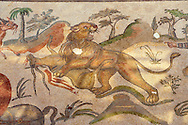 Lion killing an animal. Roman mosaics at the Villa Romana del Casale which containis the richest, largest and most complex collection of Roman mosaics in the world. Constructed  in the first quarter of the 4th century AD. Sicily, Italy. A UNESCO World Heritage Site. .<br /> <br /> If you prefer to buy from our ALAMY PHOTO LIBRARY  Collection visit : https://www.alamy.com/portfolio/paul-williams-funkystock/villaromanadelcasale.html<br /> Visit our ROMAN MOSAICS  PHOTO COLLECTIONS for more photos to buy as buy as wall art prints https://funkystock.photoshelter.com/gallery/Roman-Mosaics-Roman-Mosaic-Pictures-Photos-and-Images-Fotos/G00008dLtP71H_yc/C0000q_tZnliJD08