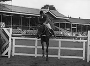 "07/08/1980<br /> 08/07/1980<br /> 07 August 1980<br /> R.D.S. Horse Show: John Player Top Score Competition, Ballsbridge, Dublin. Wolfgang Brinkmann (Germany) on ""Lewana""."