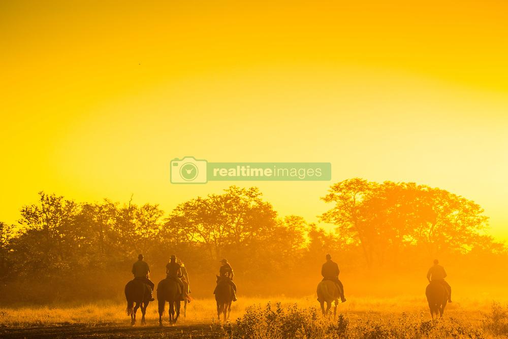 , Botswana - 4/1/2017 - (Photo by Shannon Wild/VWPics) *** Please Use Credit from Credit Field *** *** Please Use Credit from Credit Field ***
