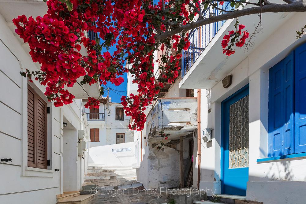 Cute colorful street with flowers in Skopelos island