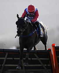Aroseforoscar ridden by Mr C Gethings Aspen Waite R & D Introducers Mares' Handicap Hurdle (Class 5) (4YO plus) - Photo mandatory by-line: Harry Trump/JMP - Mobile: 07966 386802 - 17/02/15 - SPORT - Equestrian - Horse Racing - Taunton Racecourse, Somerset, England.