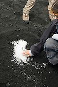 Hikers uncovering snow covered by ash emitted from Torre di Filosofo at 2920 meters, erupted 2003, on the Southern slopes of Mount Etna, The highest and most active volcano in Europe, Nicolosi, Sicily, Italy July 2006