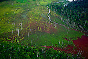Parauapebas_PA, Brasil..Desmatamento causado por mineradora na floresta amazonica- Floresta Nacional de Carajas- Para..Deforestation caused by mining in the Amazon forest, National Forest of Carajas- Para..Foto: JOAO MARCOS ROSA / NITRO