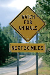 Watch For Animals Sign