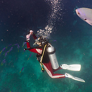 Divers diving on the Great Barrier Reef. Diver taking a picture.