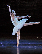 2/25/2008 -- GASTON DE CARDENAS/EL NUEVO HERALD -- Hayna Guiterrez as Odette in Cuban Classical Ballet's production of Tchaikovsky's Swan Lake at the Jackie Gleason Theater of the Performing Arts.