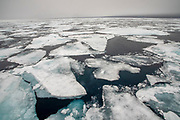 Arctic Sea ice floe. Photographed in Spitsbergen, Svalbard, Norway