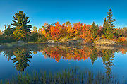 Reflection of autumn colors  in St. Poithier Lake<br />