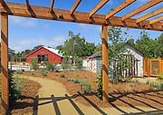 The Aliso Viejo Ranch Grounds With Historic Sheds and Barn