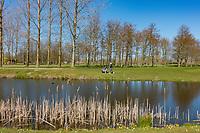 VIJFHUIZEN - Haarlemmermeersche Golf Club  COPYRIGHT KOEN SUYK