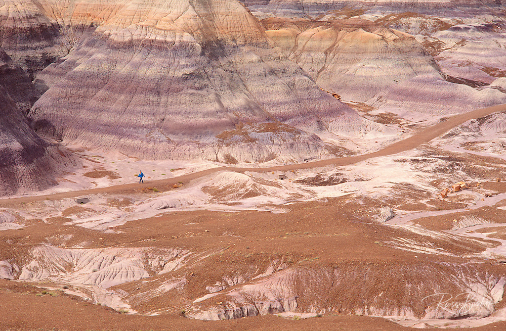 Hiker on trail through eroded hills on Blue Mesa, Petrified Forest National Park, Arizona