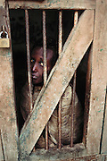 "A mental hospital built by the British in the 1930's. The hospital is named ""Jail Magnoun"" which is Arabic for ""mad"". Once a patient is committed to the hospital there is no chance of release. Some patients, like the one pictured, are caged or chained. Berbera, Somaliland."