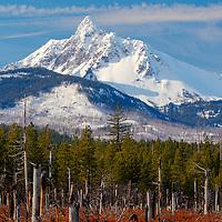 Mt. Washington after some fresh snow