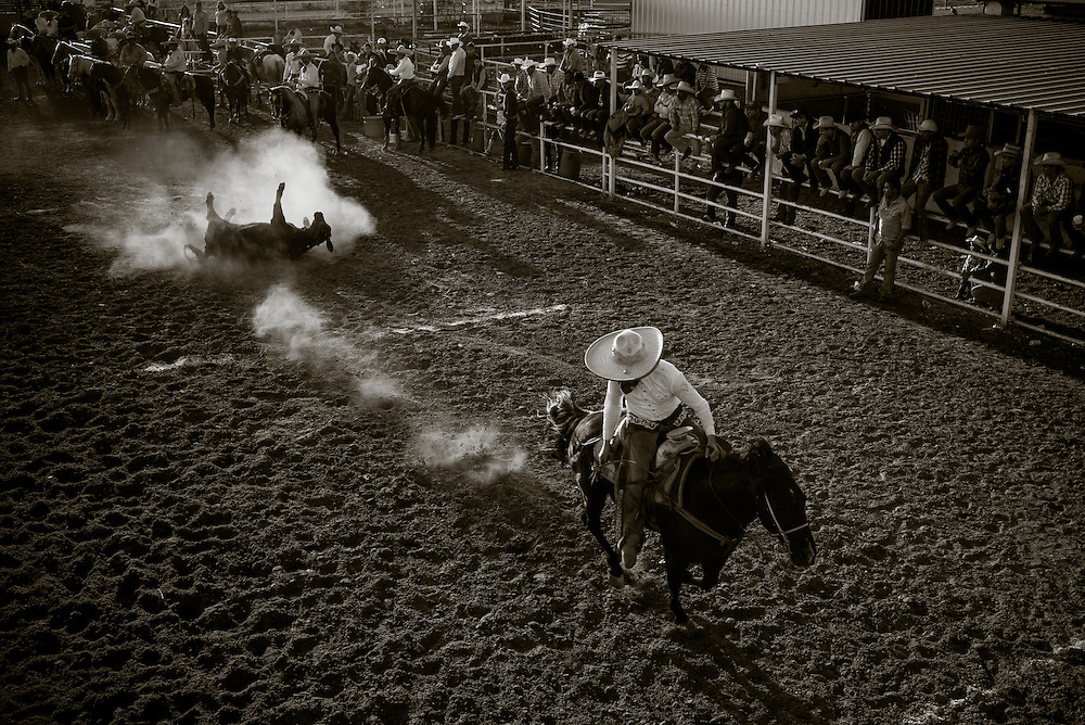 Coleadero (steer wrestling) competition at a charreada in Atascosa, Texas.