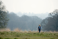 © Licensed to London News Pictures. 02/04/2014. Richmond, UK. A woman walks across a field. Visitors to Richmond Park had low visibility today April 2nd 2013. High levels of air pollution are set to spread across England and are expected  to get worse. Photo credit : Stephen Simpson/LNP