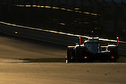 September 19, 2015 World Endurance Championship, Circuit of the Americas. Audi
