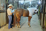 Youth from around the world converged on Oklahoma City for the American Quarter Horse Assocation (AQHA) Youth World horse show at the Oklahoma City Fairgrounds.  Each participant had to qualify either at the state or national level to compete.  All contestants under age 18 and horse must be owned by them or a direct family member...Trainers (Dukes) often help prepare the horses both by grooming and riding them.  Karen Fulmer child is competing on horse.