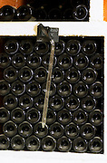 Domaine Cazeneuve in Lauret. Pic St Loup. Languedoc. Bottle cellar. A sampling pipette. France. Europe. Bottle. Bins with bottles.