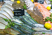 Raw fish including mackerel on display for sale in food market at St Martin de Re, Ile de Re, France